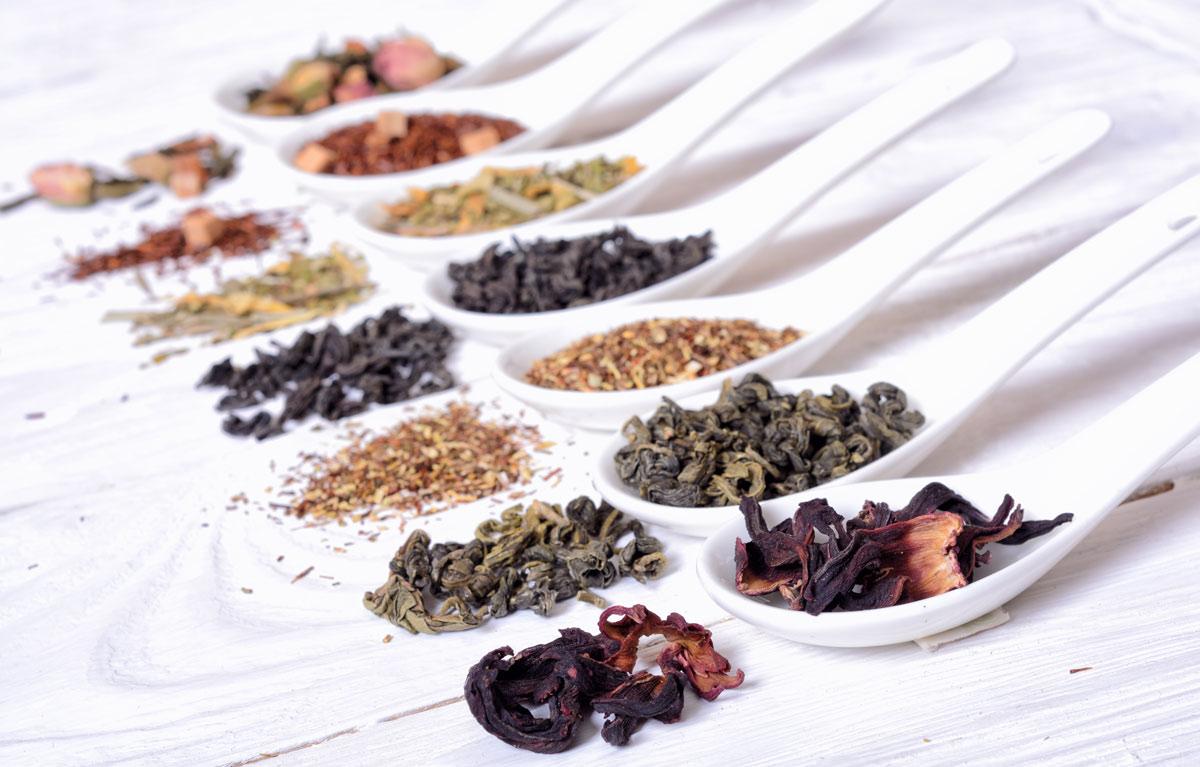 Salon de thé - Grenoble